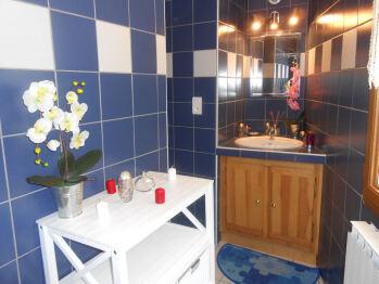 Salle de bains avec rangement, vasque