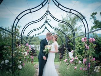 Romantic rose arch!