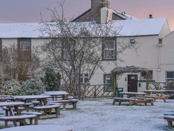 Wheatsheaf in the snow