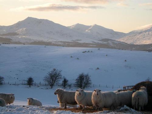 View of Snowdonia Mountains