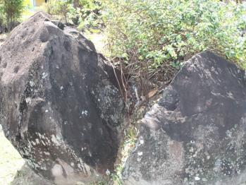Roche volcanique du Domaine