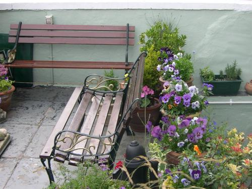 Front Patio/Garden