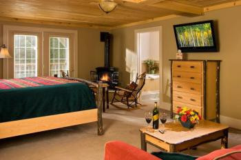 """our """"Luxury King"""" Guest room with a gas """"wood-stove"""" and jacuzzi bath and balcony overlooking the back yard"""