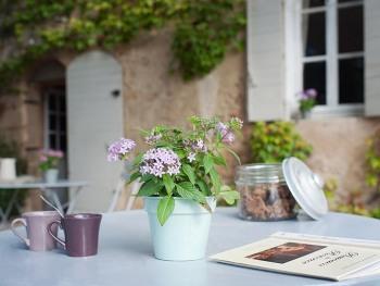 Terrasse petit déjeuner