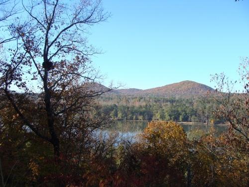 Oak Lodge View