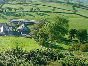 Alltyfyrddin Farm -