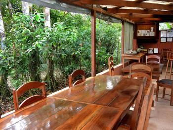 Restaurant in the jungle