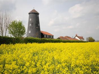 Yaxham Mill - Yaxham Mill Bed & Breakfast | Dereham