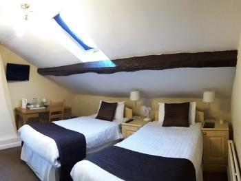 Pymgate Lodge Hotel - Twin room