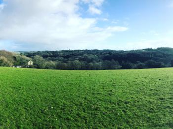 Cottages nestled in countryside - View from field behind cottages looking down onto them
