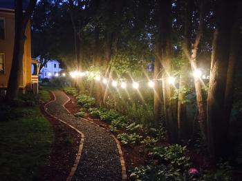 Rear garden and path at night