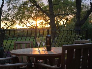 Enjoy a  sundowner, with views across ancient sheep meadows and woodland.