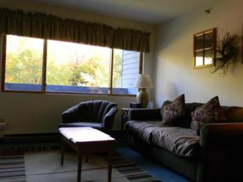 Condo-Ensuite with Bath-Family-Woodland view-ABrookside2 A213 (studio)
