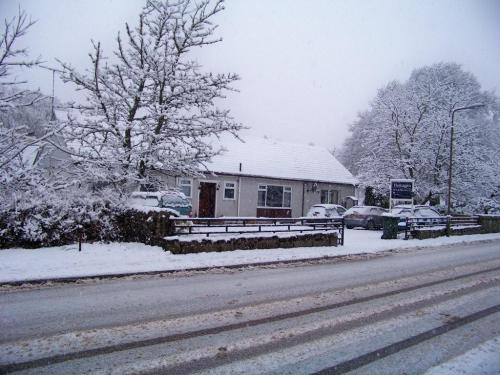 Snow in the Winter