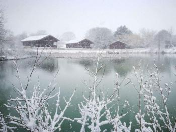 Watermeadow Lakes & Lodges - Frosty Morning