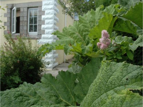 The Oratory - Garden