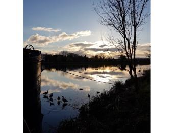 environnement privilégié, vue sur le canal
