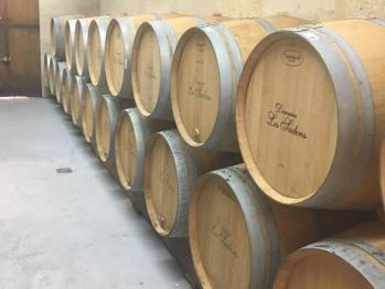 Visite du Domaine les Sadons, plus petit viticulteur en AOC Pauillac
