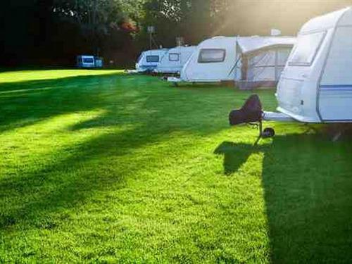 Electric Camping Pitch