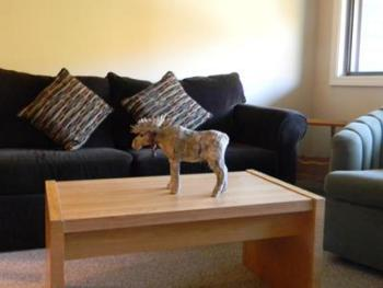 Condo-Ensuite with Bath-Family-Mountain View-Brookside2 A314 (1bedroom
