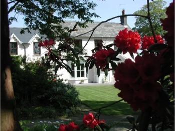 Cefn-y-Dre - House in Summer