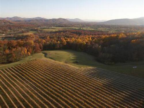 The Vineyard at Veritas