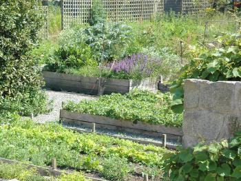 Kilgraney House, Kitchen Garden