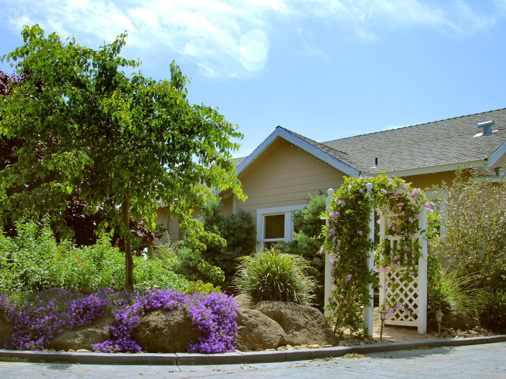 The Pinot Noir Cottage