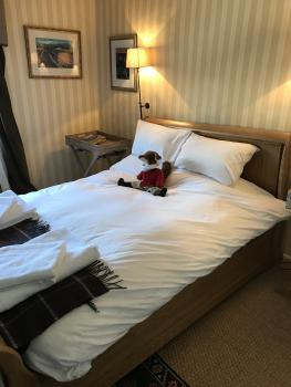 Double room-Romantic-Ensuite with Shower-Countryside view-The Heythrop room - Tarif de base