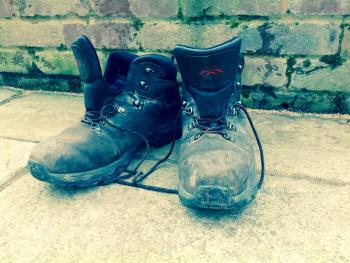 Walkers and muddy boots welcome