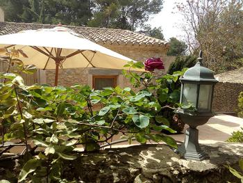 Vista jardín interior