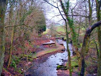 Kirktonhall Glen, West Kilbride