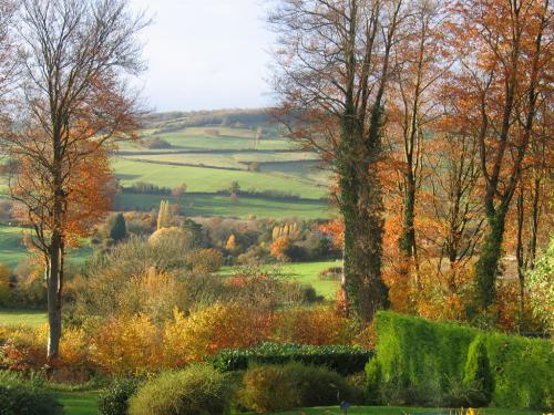 An autumn view from guest bed rooms | Spinneycross, Corsham