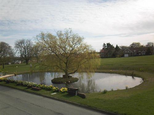 Picturesque Village Green with Duck Pond