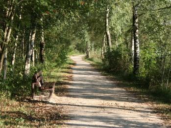Wanderweg am Ottermeer