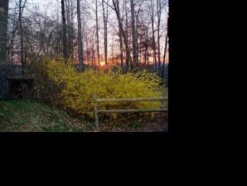 Springtime sunrise at the Mountain Top Lodge.