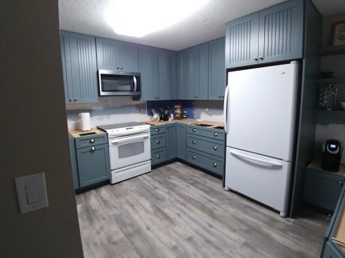 Kitchen mid-reno; countertops & backsplash coming in April 2019