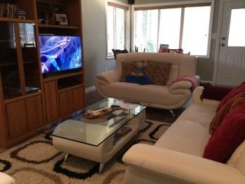 TV area #2