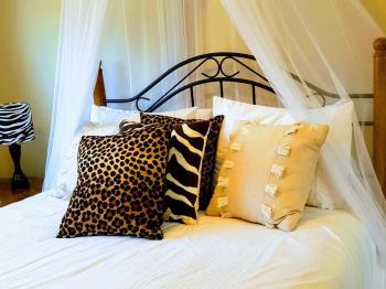 The Safari Room with queen size bed.