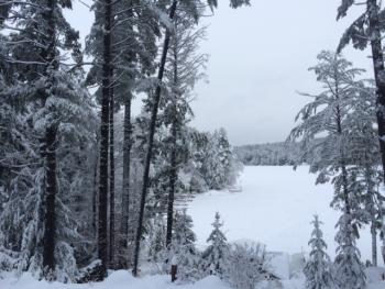 Friends Lake in her icy splendor- good day to take a walk in the snow, a snowshoe on the lake , or to curl up with a good book and a glass of wine fireside!