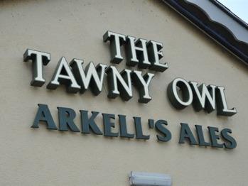 The Tawny Owl -