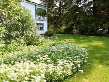 Garden View Around the Carriage House