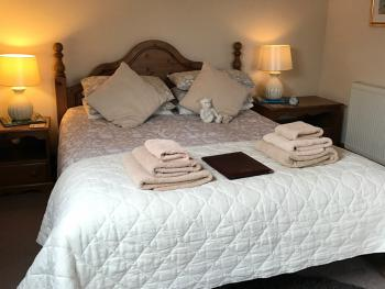 Robeanne House - This king bed room is spacious with ensuite shower ,tv and tea and coffee tray ironing board iron and hairdryer