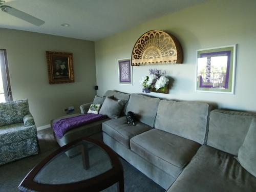 Living room mid reno--new rug coming