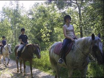 Randonnée équestre sur les sentiers de Franche comté