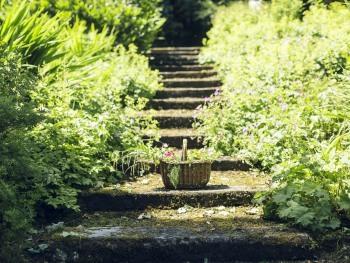 Dell Garden