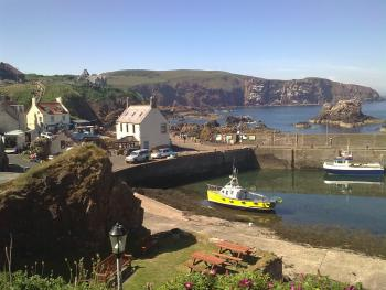 St Abbs - spectacular rugged coastline and marine National Park.