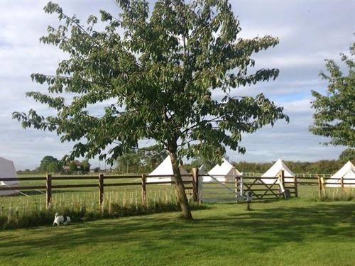 Skipbridge Farm Shepherds Huts, York, United Kingdom