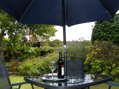 Why not enjoy a bottle of wine in the garden on a summer evening