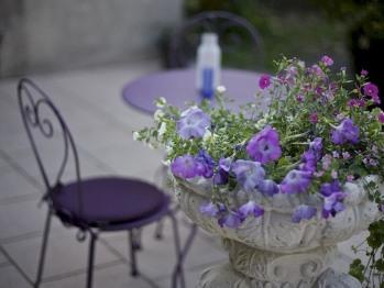 Jardin et terrasse fleuris l'été